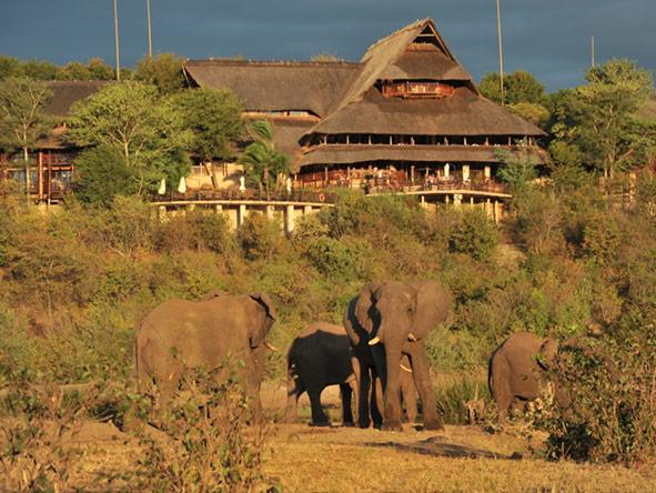 Victoria Falls Safari Lodge - game