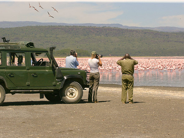 Kenya's Mara & Lake Sky Safari - Gallery 4