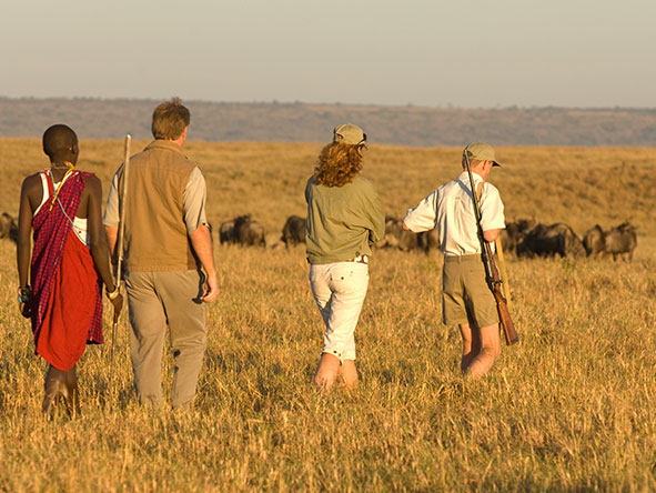 Kenya's Mara & Lake Sky Safari - Gallery 10