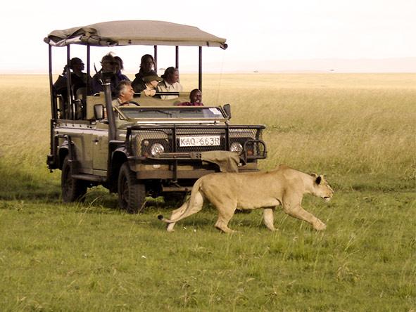 Luxury Mara & Samburu Experience - Gallery 6
