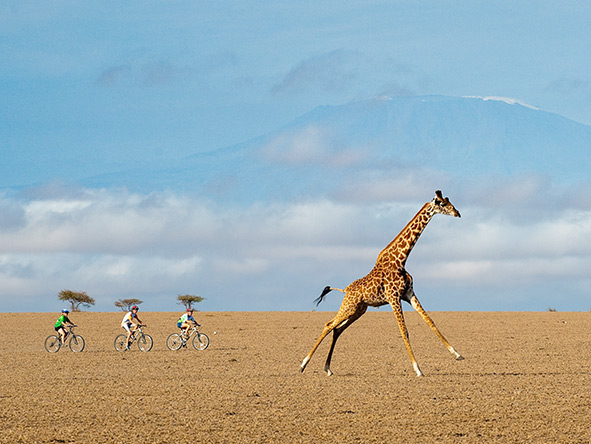 Activities at Kenya's ol Donyo Lodge include mountain biking, horseback safaris & fly-camping adventures.
