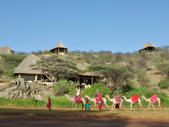 Activities at Safari Collection properties range from game drives & ballooning to bush walks & camel safaris.