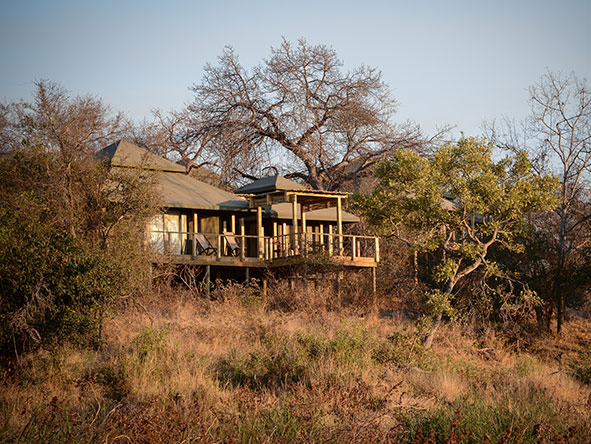 Simbavati Hilltop Lodge - Gallery 1