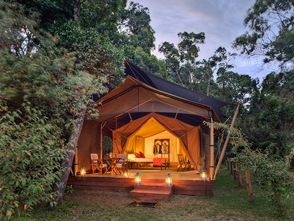 elephant pepper Camp - Gallery 1