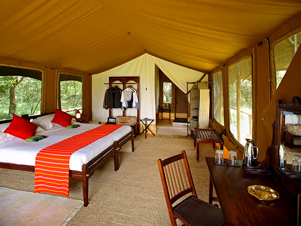elephant pepper Camp - Gallery 3