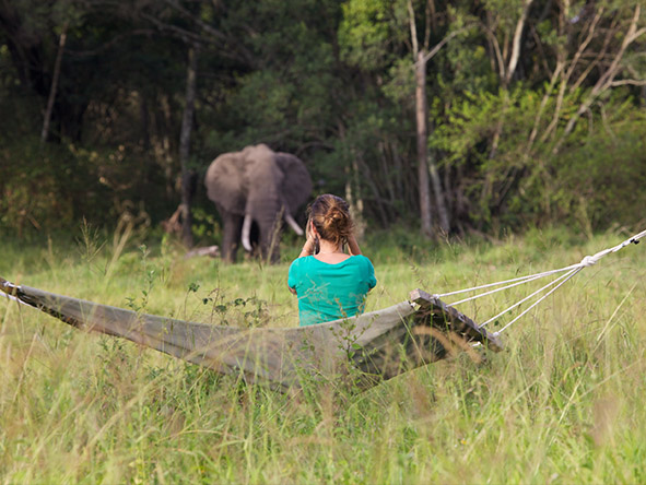 elephant pepper Camp - Gallery 10