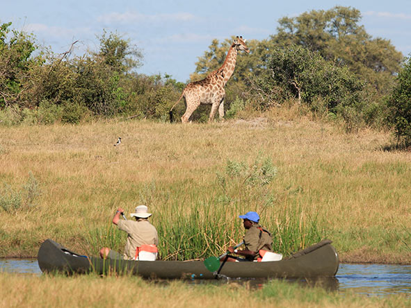 Explore the remote Selinda Spillway by canoe from the comfort of your mobile camp.