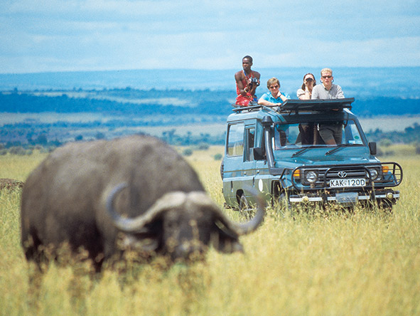 Mobile safaris use open-sided 4X4s with an open roof - ideal for game viewing.
