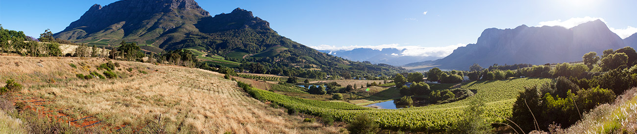 Romantic Winelands Self-Drive - banner 2