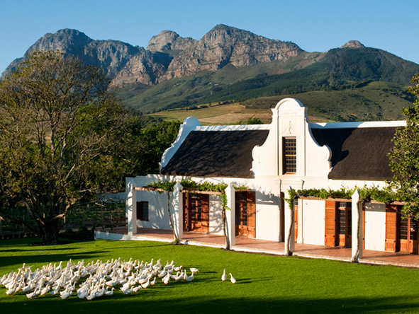 Romantic Winelands Self-Drive - Gallery 10