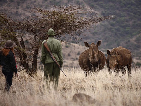Trained, armed & experienced, guides take great care to ensure complete safety on African walking safaris.