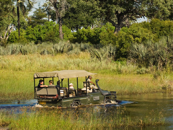 Sandibe Okavango Safari Lodge - Gallery 9