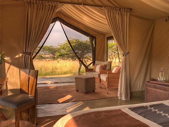 Tented Tarangire, Serengeti & Masai Mara - Gallery 9