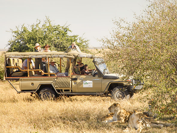 Kenya's Cultural Amboseli, Samburu & Mara - Gallery 10