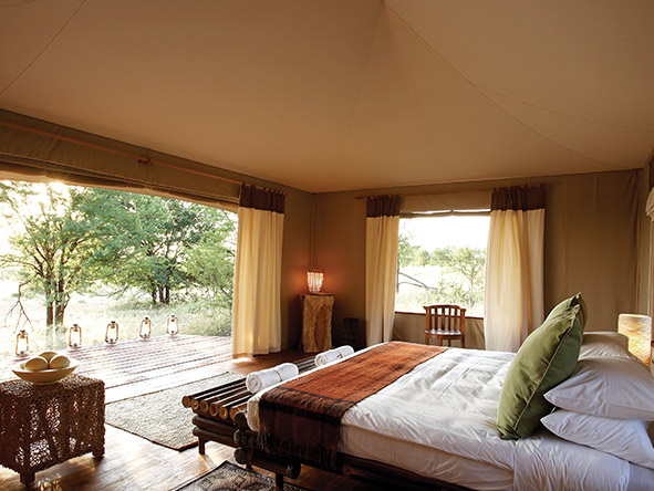Authentic Luxury Safari & Beach Holiday - Gallery 4
