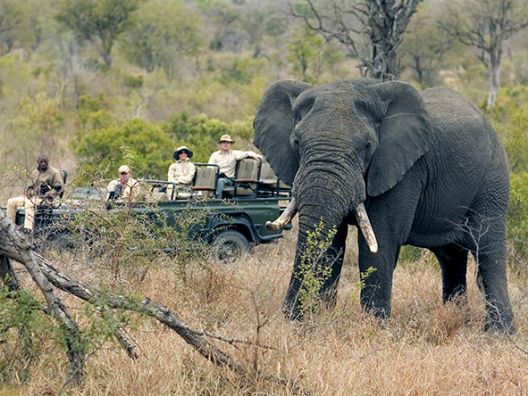 Southern Africa Highlights -  Gallery 5