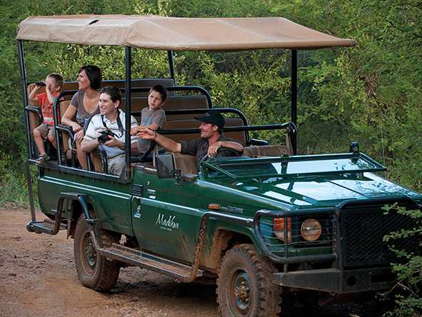 Cape Town & Madikwe for the Family - Gallery 2