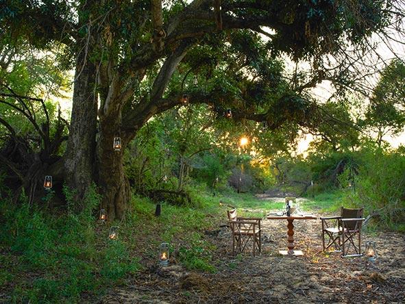 Cape Grace & Singita Honeymoon Retreat - Gallery 3