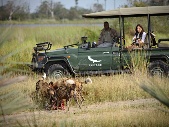 NXABEGA OKAVANGO SAFARI CAMP - Gallery 2