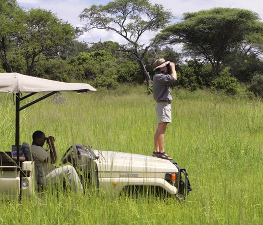Nomad Tanzania Top Brand