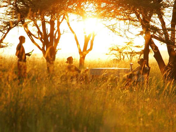 Exclusive Safaris