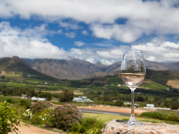 South Africa's Cape Town, Winelands & Kruger - Gallery 5