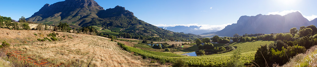 South Africa's Cape Town, Winelands & Kruger - Banner