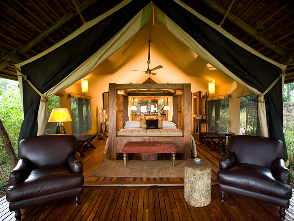 Luxury Glimpse of the Mara - Gallery 6