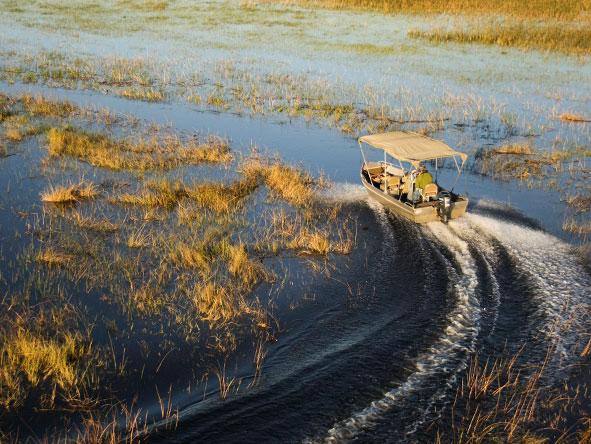 Okavango, Moremi & Savute Safari - Gallery 1