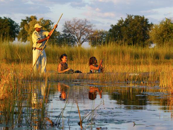 Okavango, Moremi & Savute Safari - Gallery 2