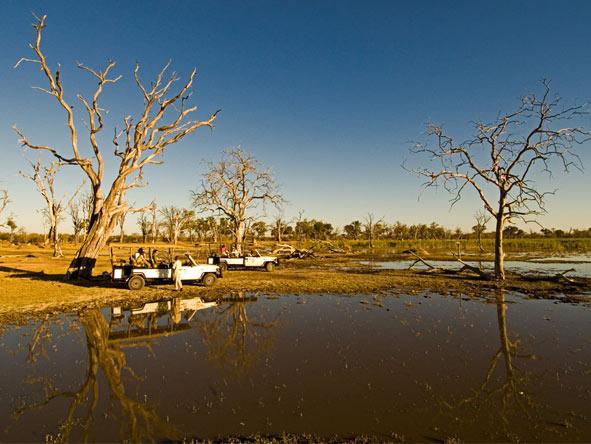 Okavango, Moremi & Savute Safari - Gallery 4