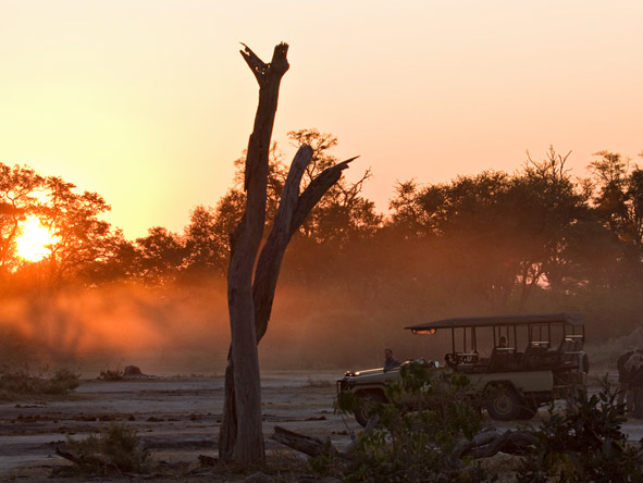 Botswana Luxury Safari - Gallery 2