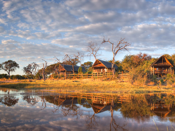 Botswana Luxury Safari - Gallery 10