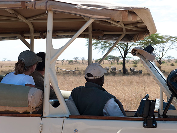 Sanctuary Serengeti Migration Camp - Gallery 2