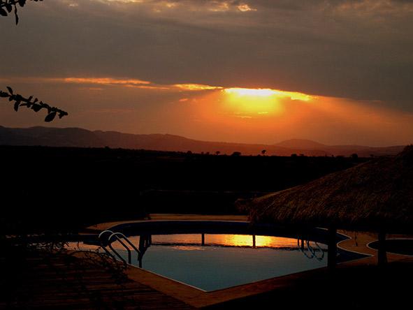 East Africa's Landscape, Migration & Gorillas - Gallery 5