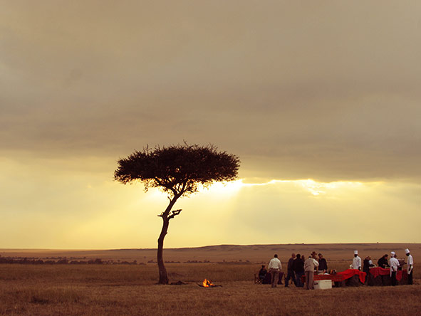 Mara Intrepids Camp - Gallery 1