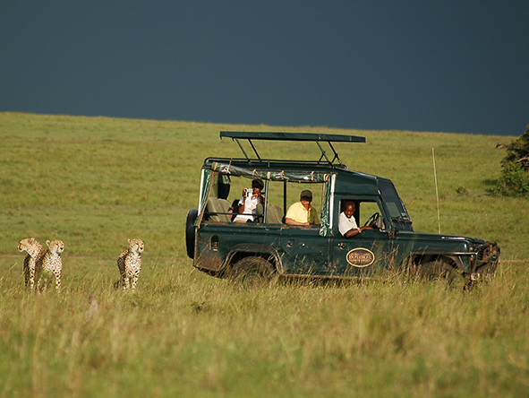 Mara Intrepids Camp - Gallery 10