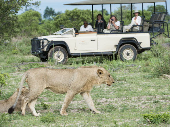 Thrilling Vic Falls & Botswana Safari - Gallery 9
