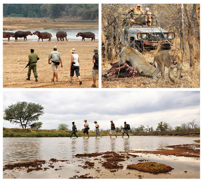 Top 3 Hike & Trek Adventures in Africa