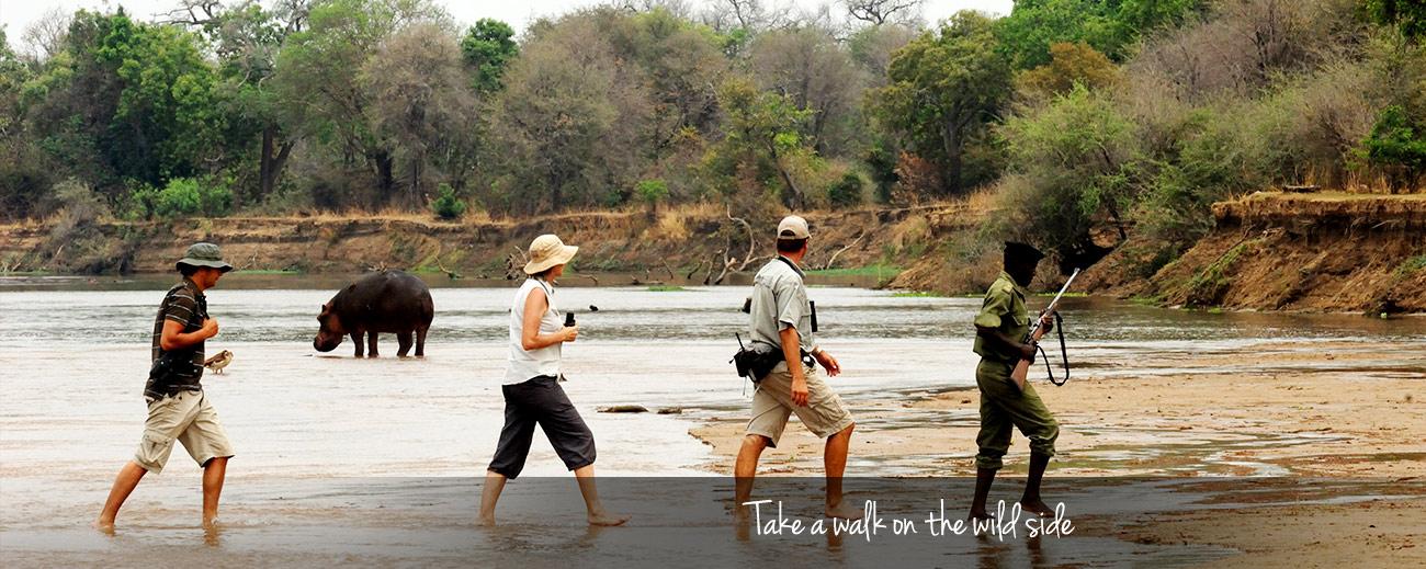 Top 3 Hike & Trek Adventures in Africa Banner