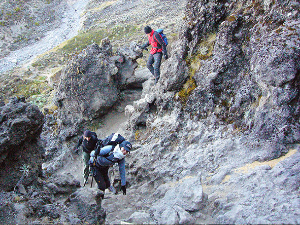 Kilimanjaro Trekking Machame - Gallery 2
