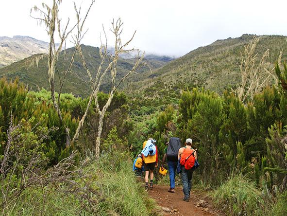 Kilimanjaro Trekking Machame - Gallery 3