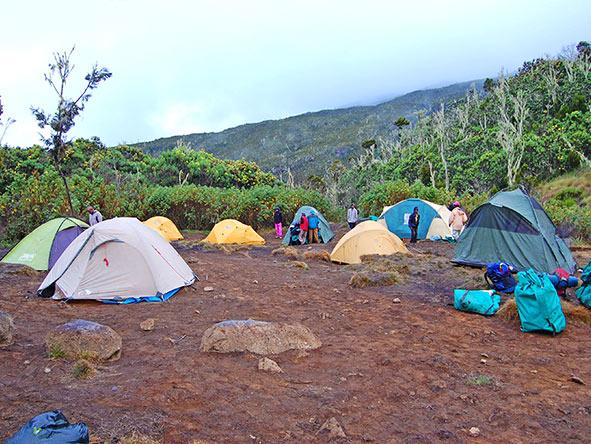 Kilimanjaro Trekking Machame - Gallery 4