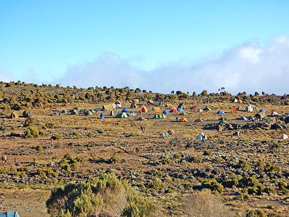 Kilimanjaro Trekking Machame - Gallery 6