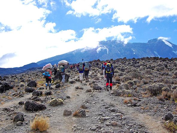 Kilimanjaro Trekking Machame - Gallery 9