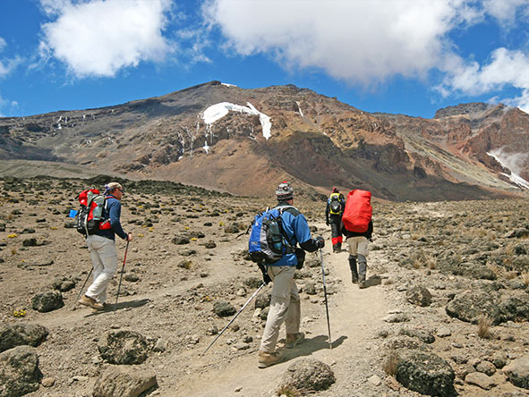 Kilimanjaro Trekking Machame - Gallery 10
