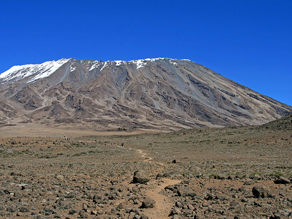 Kilimanjaro Trekking Lemosho - gallery 5