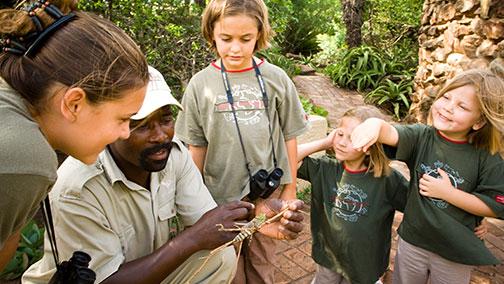 Tours & Safaris - Family Holidays & Safaris