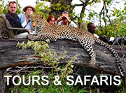 Kruger Tours & Safaris
