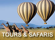 Serengeti Tours & Safaris